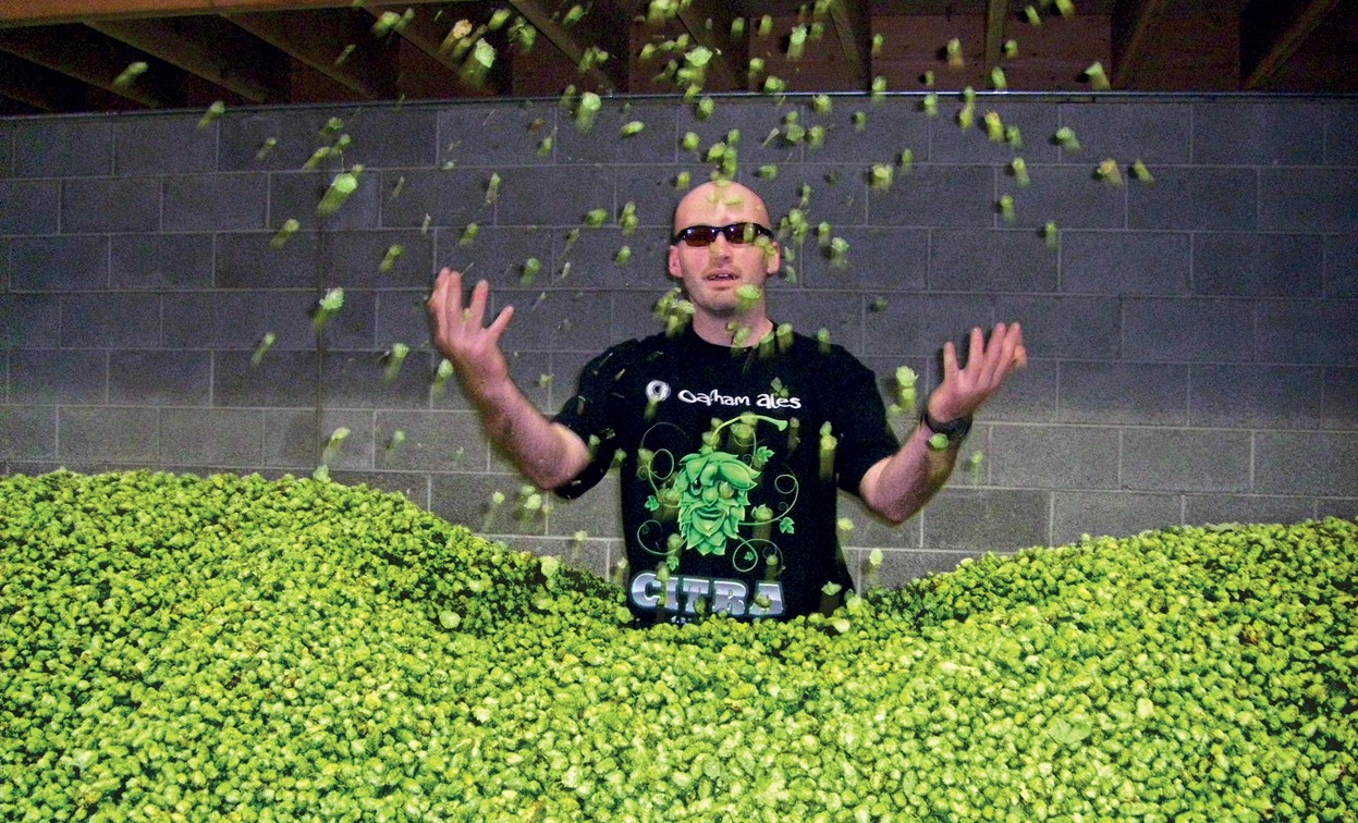 Our love for Citra hops